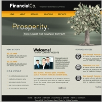 Financial co template free vector graphic download for 2012 bpc financial template