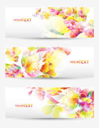 Beautiful Colorful Flowers Banner 2 1