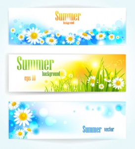Beautiful Colorful Flowers Banner