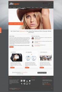 Biscayne Web Template