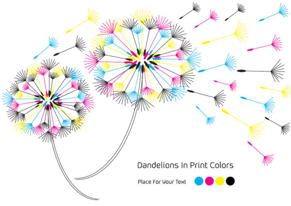 Dandelions CMYK color