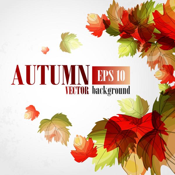 Autumn Scenery 21