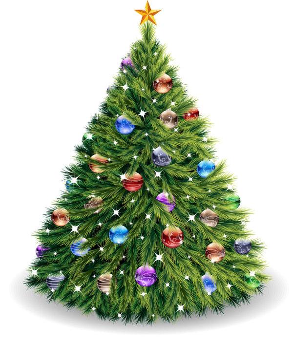 Merry Christmas 2013 232
