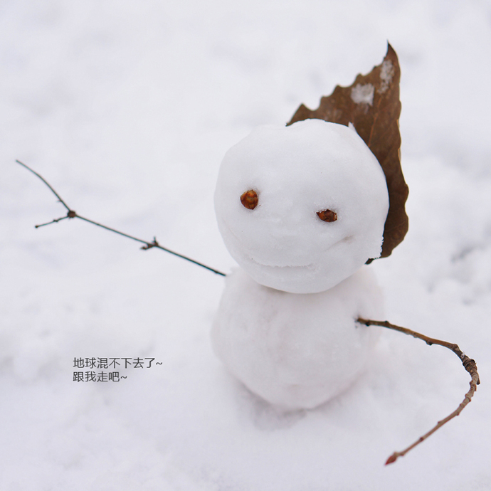 Beautiful Snowman 3