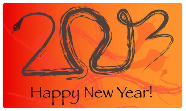 Happy New Year 2013 57