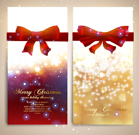 Merry Christmas 2013 291