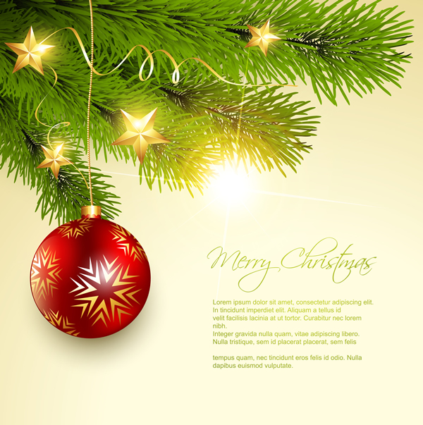 Merry Christmas and Happy New Year 2013 11