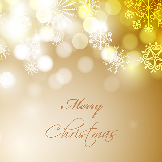 Merry Christmas and Happy New Year 2013 73