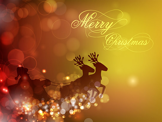 Merry Christmas and Happy New Year 2013 75