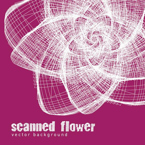 Scanned Flower