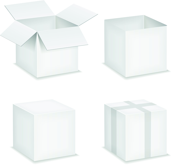 Packaging Box 24