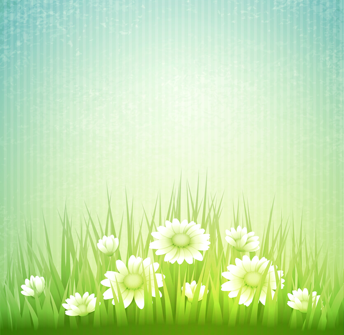 Spring Floweres Grass Background