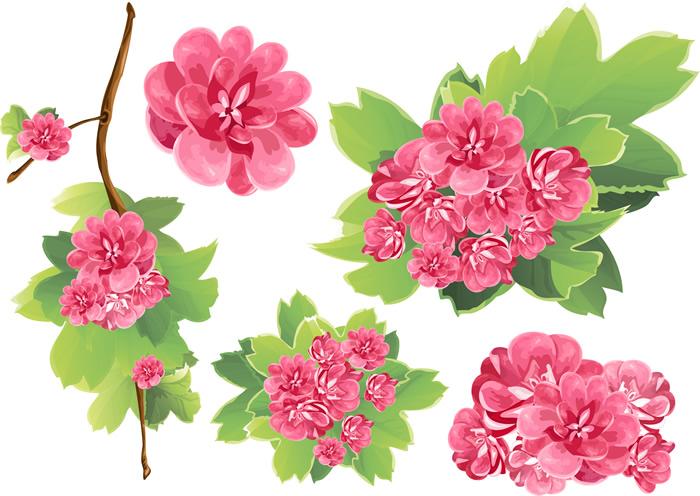 Spring Plum