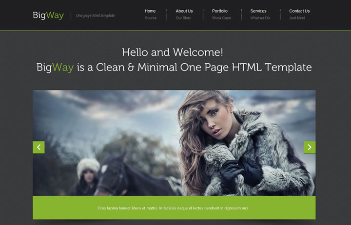 Bigway Flash Web Template