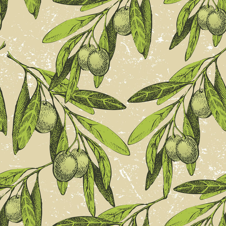Olive Fruit