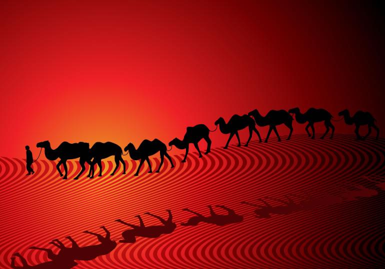 Camel Desert Silhouette