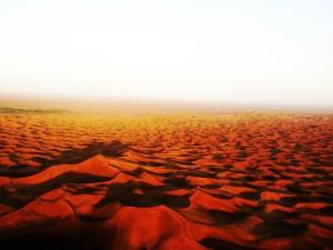Desert Scenery 2