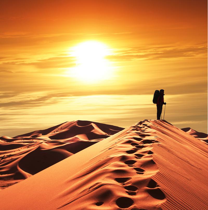 Dusk Desert