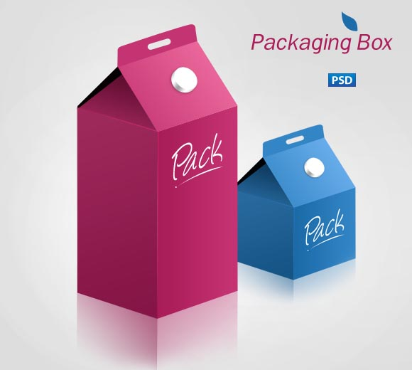 Packaging Box psd