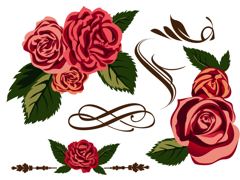 Rose | Free Vector Graphic Download