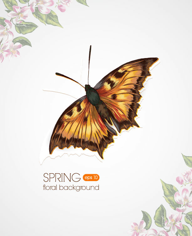 Spring Floral Background 2