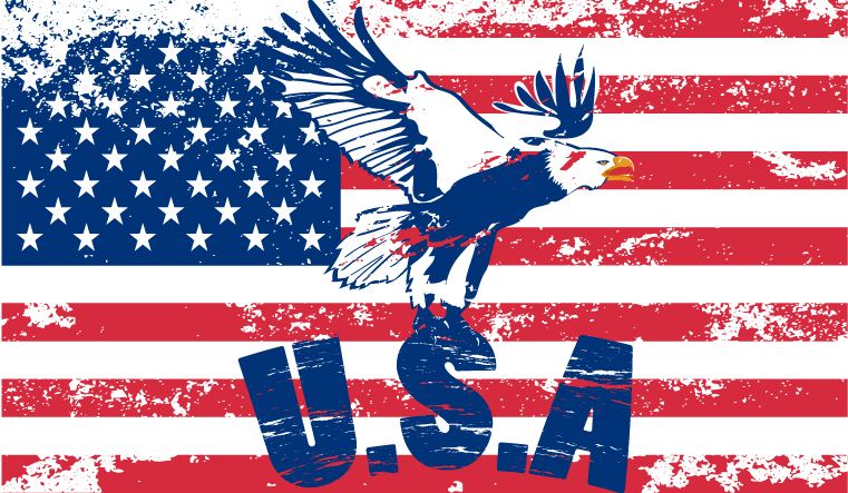 vintage american flag free vector graphic download