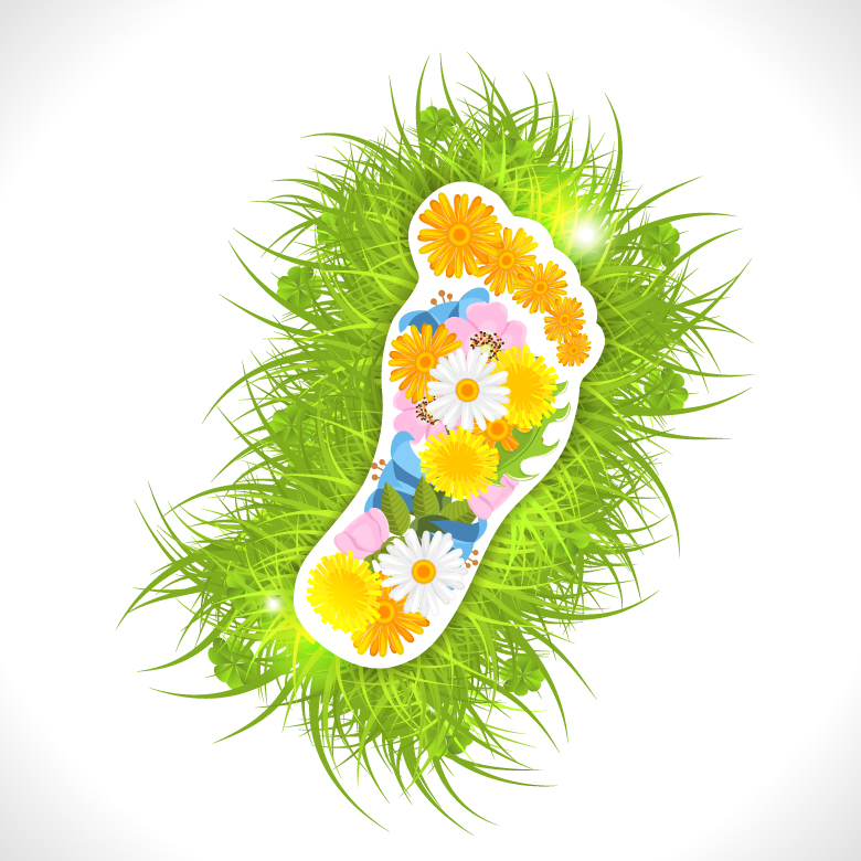 Flowers Green Grass Footprint