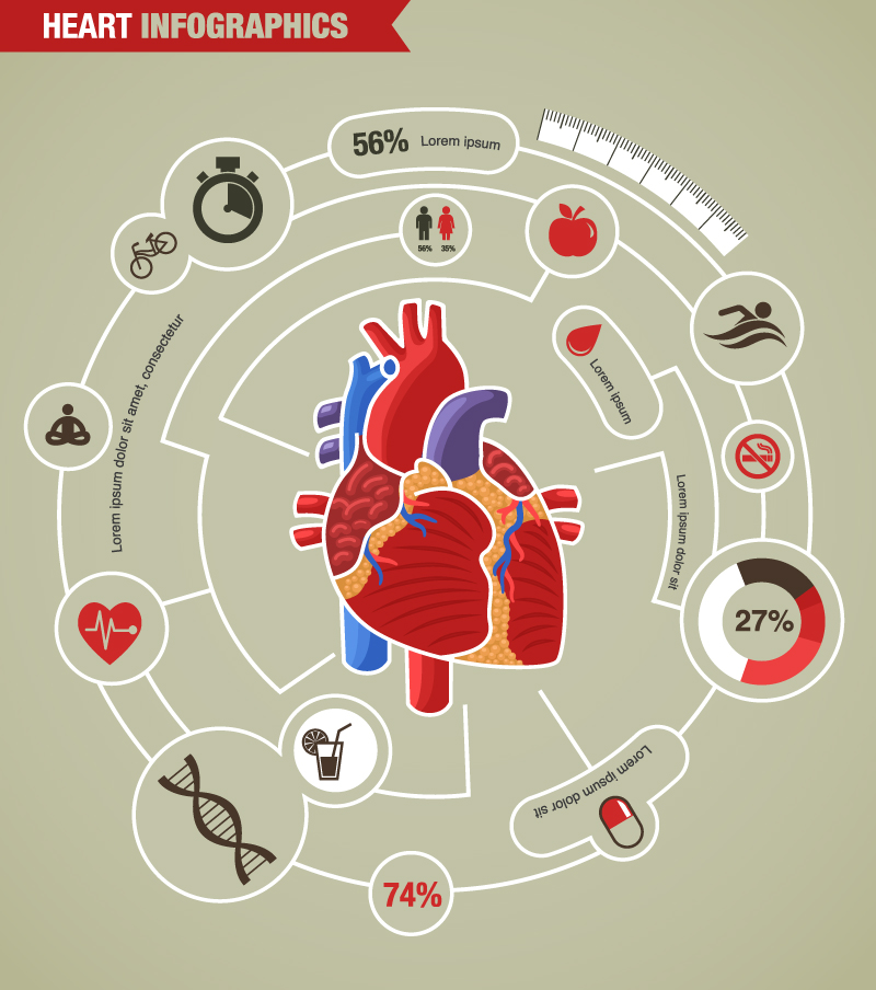 Infographics Heart Elements