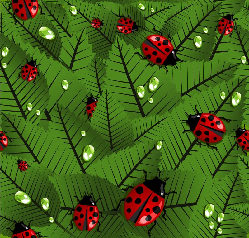 Leaves Ladybug Vector