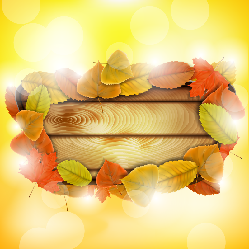 Autumn Maple Leaves Wood Vector