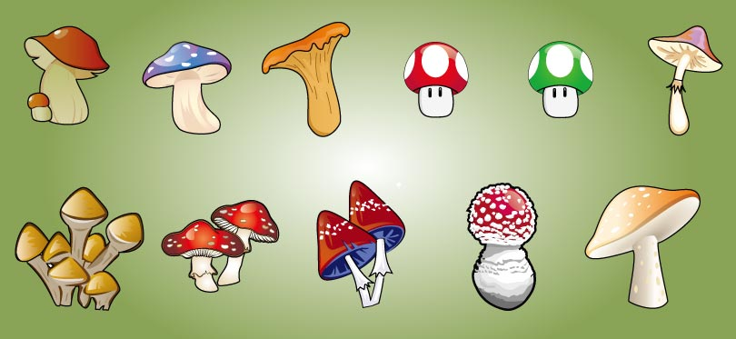 Cartoon Mushrooms Vector
