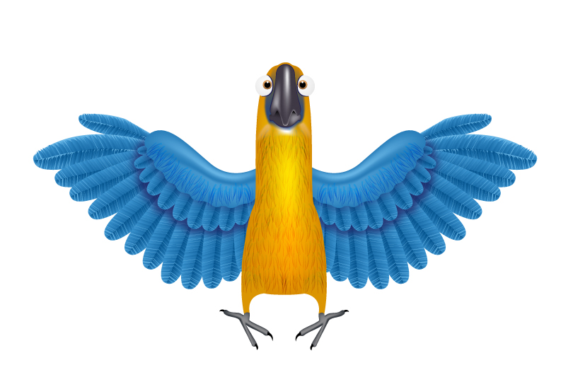 Cartoon Macaw Vector