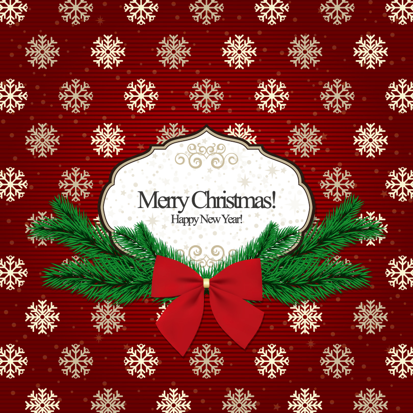 Classical Snowflake Christmas Cards Vector