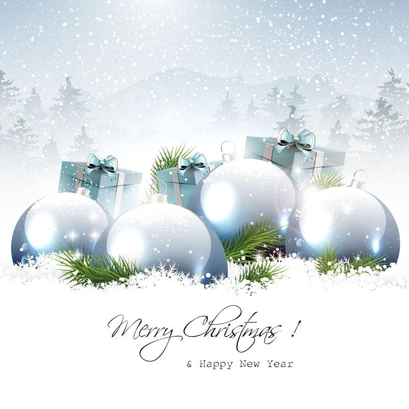 Snowflake Xmas Ball Gift Vector