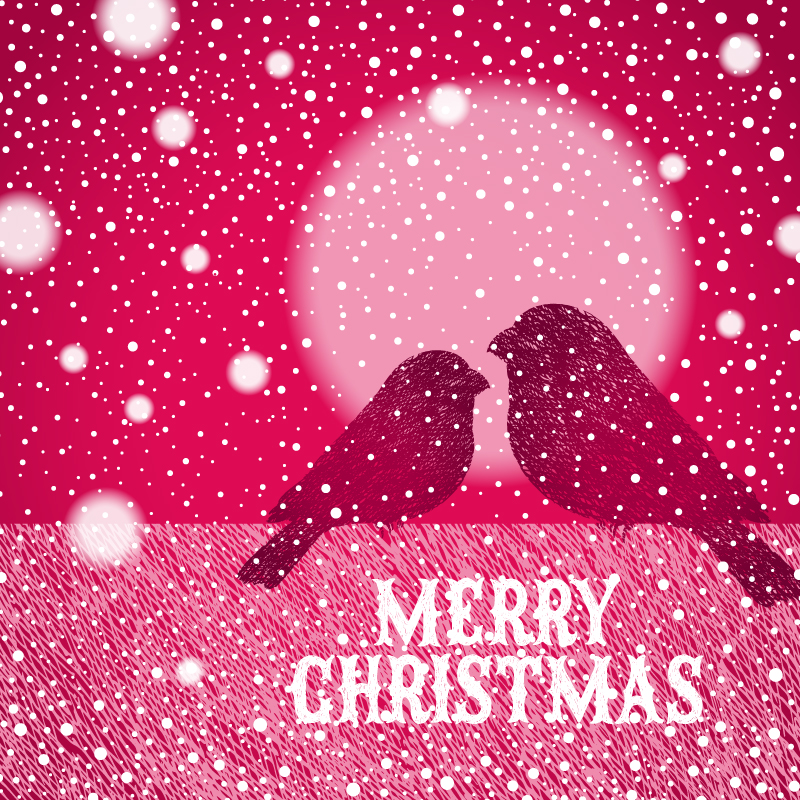 Christmas Eve Paired Birds Snowy Night Vector
