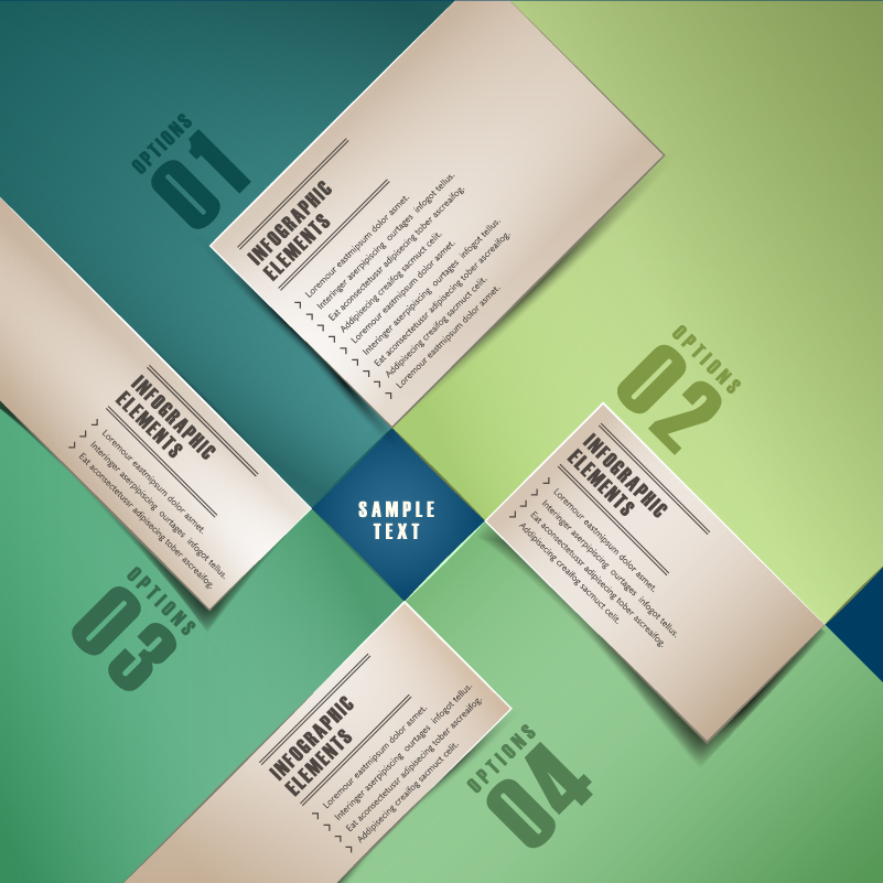 Infographic Card Options vector