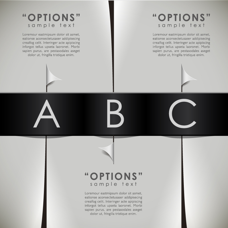 Infographics Options Sample Text Vector