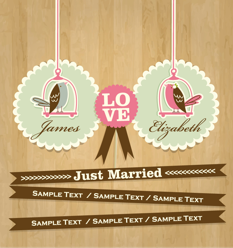 Wedding Day Just Married Vector