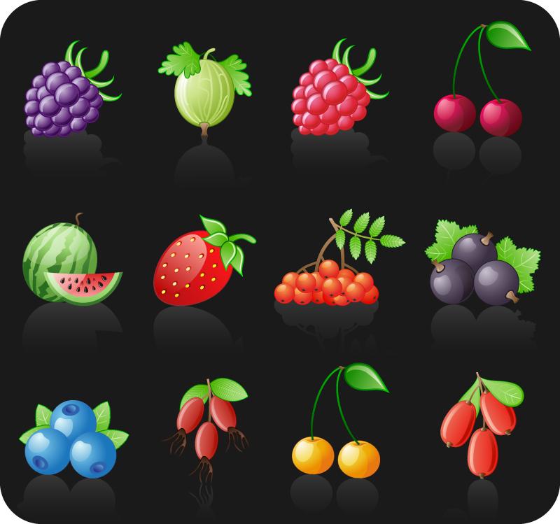 12 Fresh Fruit Icons Vector