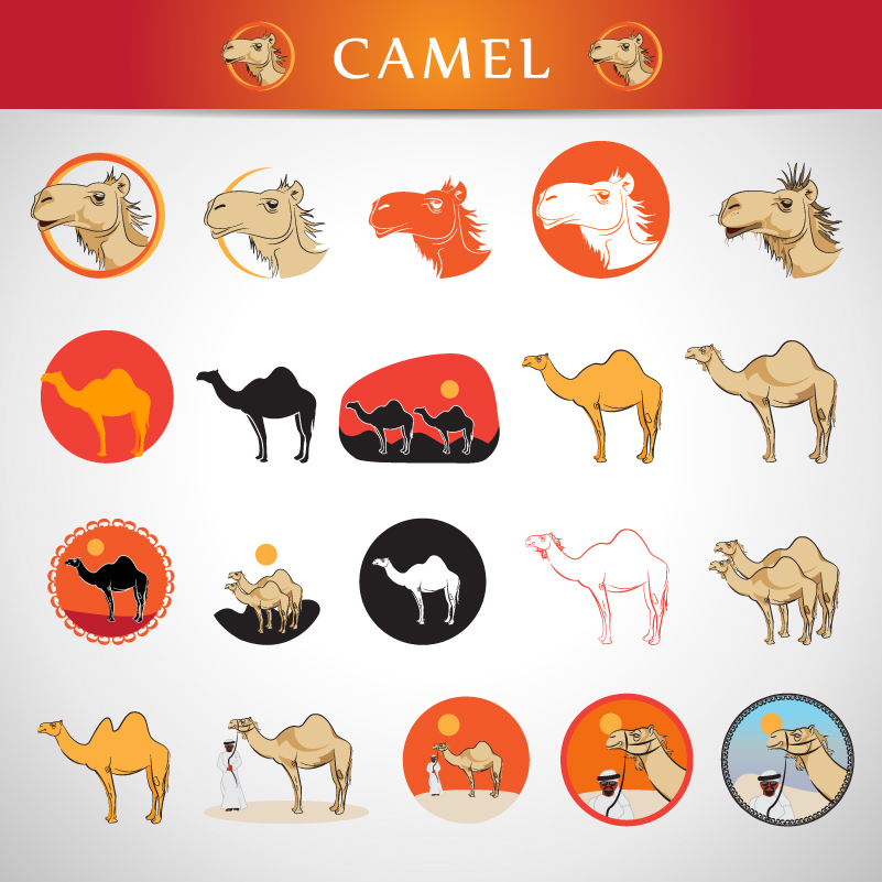Camel Icons Design Vector