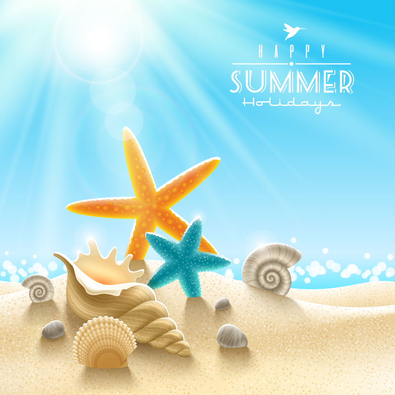 Summer Beach Starfish Background Vector