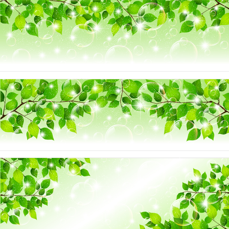 Fresh Leaves Banner Vector