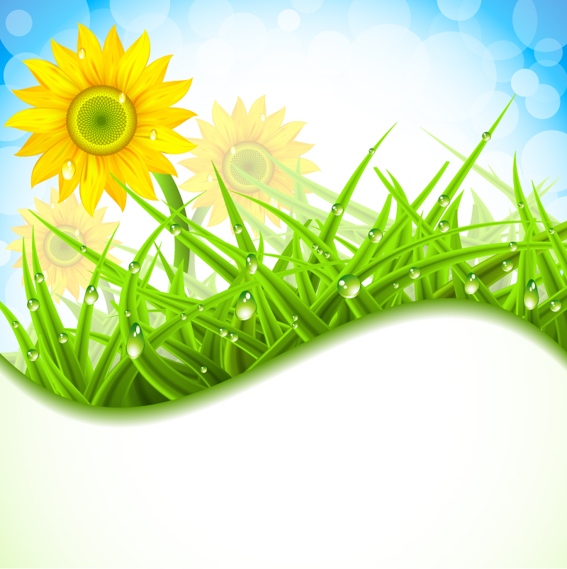 Sunflower and Grass Background Vector