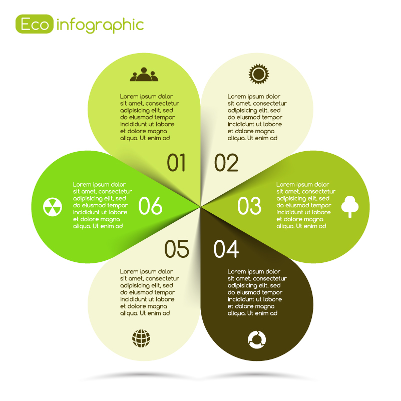 Infographic Flower Chart Vector