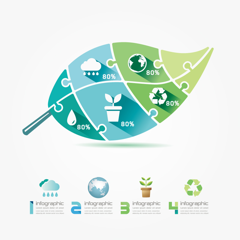 Infographic Green Leaf Environmental Vector