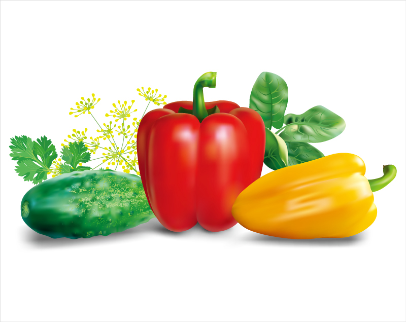 Peppers and Cucumbers Vector