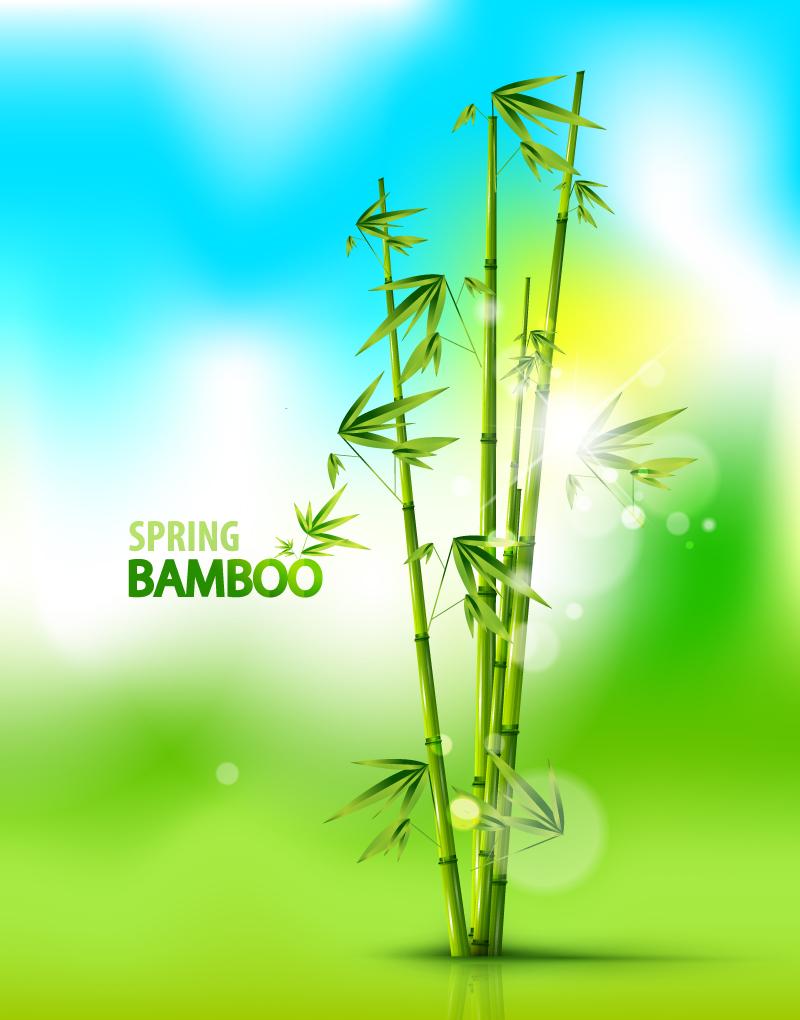 Spring Bamboo Vector