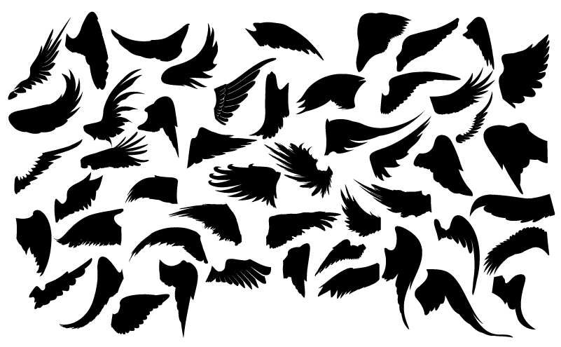 Various Wings Silhouettes Vector