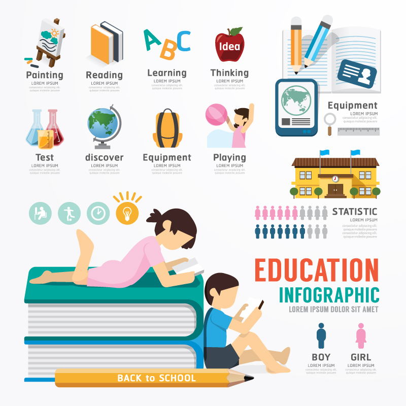 Education Infographic Statistic Vector