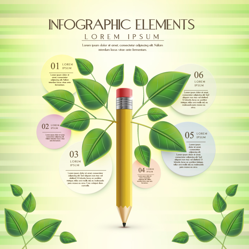 Pencil Branch Business Inforgraphic Vector